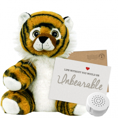 "Tiger 8"" Message Bear"