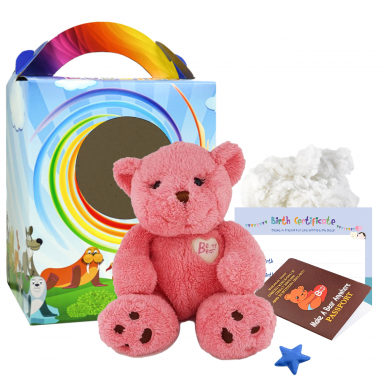 "Cupcake 12"" Travel Ted"