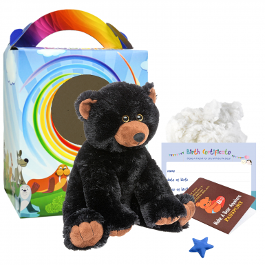 "Jet Bear 16"" Travel Ted"
