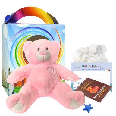 "Princess 16"" Travel Ted"