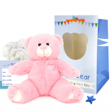 "Princess 16"" Bear Kit"