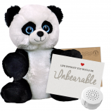 "Panda 8"" Message Bear"