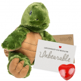 "Tommy Turtle 16"" Message Bear"