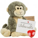 "Smiley Monkey 16"" Message Bear"