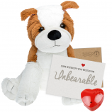 "Bulldog 16"" Message Bear"