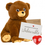 "Cuddle Bear 16"" Message Bear"