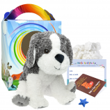 """Perro Dog 16"""" Travel Ted"""
