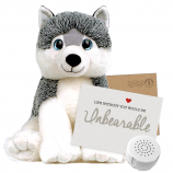 "Husky Dog 16"" Message Bear"