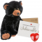 "Jet Bear 16"" Message Bear"