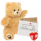 "Scruffy Bear 16"" Message Bear"