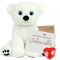 "Polar Bear 16"" Message Bear"