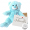 "Little Prince 8"" Message Bear"