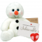 "Snowy Snowman 16"" Message Bear"