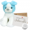 "Koda The Puppy 8"" Message Bear"