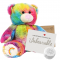 "Rainbow 16"" Message Bear"