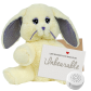 "Daisy Bunny 8"" Message Bear"
