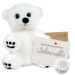 "Snowy Polar Bear 8"" Message Bear"