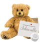 "Scruffy Bear 8"" Message Bear"