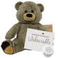 "Griz Grizzly 16"" Message Bear"