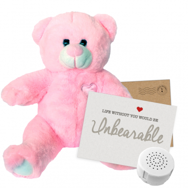"Little Princess 8"" Message Bear"