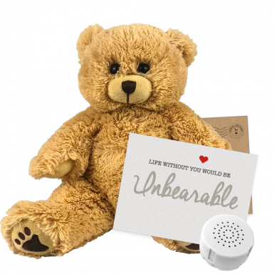 "Charlie Bear 8"" Message Bear"