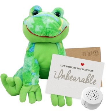 "Funky Daddy Frog 16"" Message Bear"