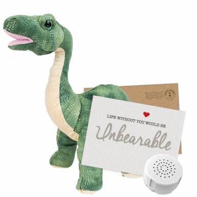 "Brontosaurus 16"" Message Bear"