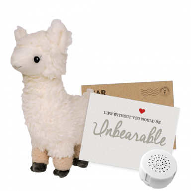 "Loopy the Llama 8"" Message Bear"