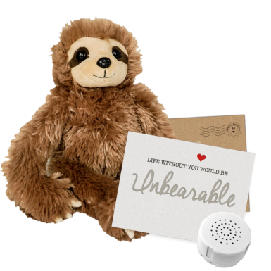 "Slumber the Sloth 8"" Message Bear"