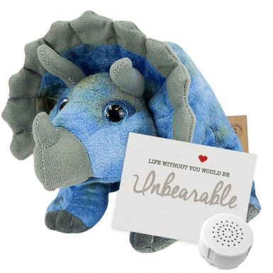 "Tricky The Triceratops 8"" Message Bear"