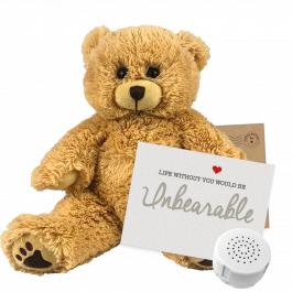 "Charlie Bear 8"" Message Bear"