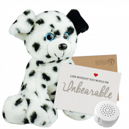 "Dalmatian 16"" Message Bear"