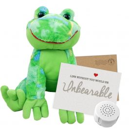 """Funky Daddy Frog 16"""" Message Bear"""