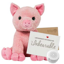 """Percy Pig 16"""" Message Bear"""