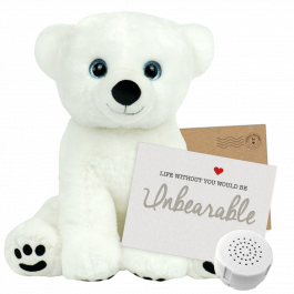 "Polar Bear 16"" Message Bear"