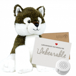 """Wiley Wolf 16"""" Message Bear"""