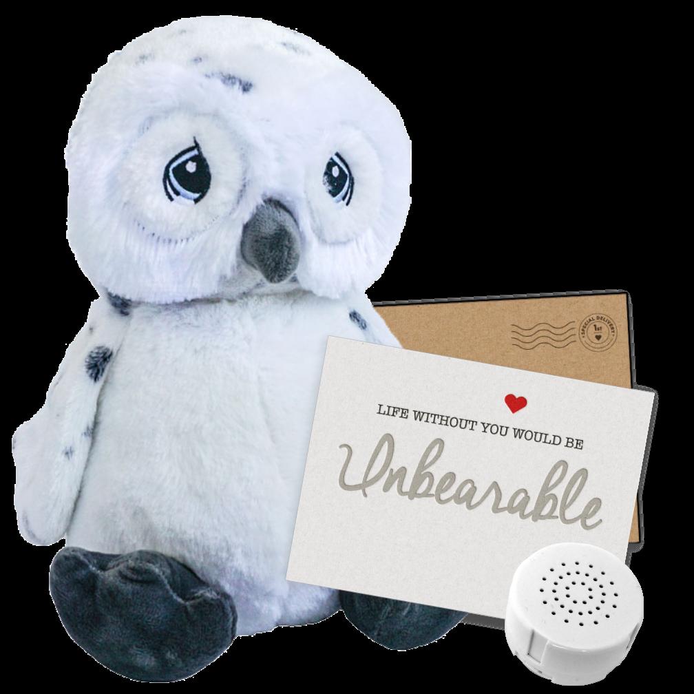 """Owl 16"""" Message Bear"""