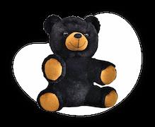 Choose your teddy bear or unstuffed animal